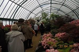 Service Espace Générations - Visite des serres de Laeken - 27-04-2017